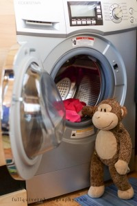 Monkey Doing Laundry